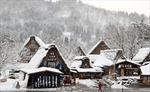 Thăm làng cổ Shirakawago ở Nhật Bản