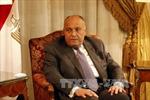 Căng thẳng ngoại giao vùng Vịnh: Ai Cập và Mỹ thảo luận giải quyết khủng hoảng với Qatar