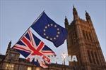 Các công ty EU đang chuyển chuỗi cung ứng hàng hóa khỏi Anh