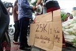 Người dân Thủ đô 'giải cứu' củ cải giúp nông dân Tráng Việt
