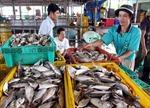 Người dân gặp khó vì dự án cảng cá... 'nằm trên giấy' gần 16 năm