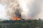 Ba người thương vong khi đốt thực bì ở Thái Nguyên
