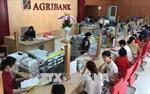 Các tổ chức tín dụng kỳ vọng kết quả kinh doanh cải thiện trong quý II/2018