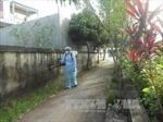 Cà Mau: Ca tử vong đầu tiên vì bệnh sốt xuất huyết trong năm