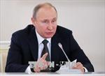 Tổng thống Nga Putin nói gì về vụ Syria bị không kích?