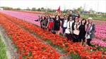 TP Hồ Chí Minh tăng cường kiểm soát chất lượng tour 0 đồng