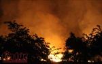 Cháy lớn ven rừng tràm ở huyện Bình Chánh