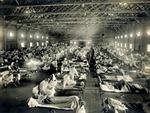 Đại dịch cúm thế kỷ giết chết 50 triệu người