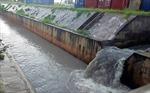 Cà Mau tích cực khắc phục các 'điểm nóng' về ô nhiễm môi trường