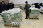 Tây Ban Nha thu giữ 9 tấn ma túy giấu trong container chuối