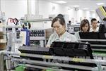 Tận dụng ưu đãi từ Hiệp định thương mại tự do Việt Nam - Hàn Quốc