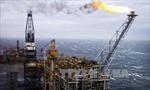 Giá dầu Brent sắp chạm mốc 80 USD/thùng