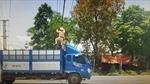 Trưng dụng xe tải gỡ thòng lọng chắn ngang đường gây nguy hiểm giao thông