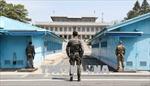 Sau thượng đỉnh liên Triều, khách du lịch tới biên giới tăng mạnh