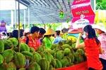 Giảm giá đến 30% tại Lễ hội trái cây Nam bộ năm 2018