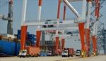 Bà Rịa-Vũng Tàu khởi công xây dựng tuyến đường quan trọng 991B