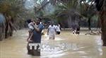 Yemen: Bão lớn càn quét đảo Socotra, ít nhất 17 người mất tích