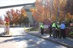 Rò rỉ khí độc làm gần 20 người thương vong ở nhà máy giấy Australia