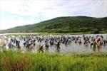 Độc đáo lễ hội đánh bắt cá Đồng Hoa
