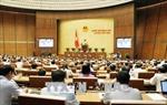 Kỳ họp thứ 5, Quốc hội khóa XIV: Bàn về quản lý, sử dụng vốn nhà nước tại doanh nghiệp