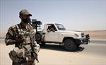 Mỹ điều 250 xe tải chở vũ khí hạng nặng 'tiếp lửa' cho lực lượng nổi dậy Syria