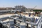 Tổng thống Mỹ chỉ trích OPEC cố tình tiếp tục tăng giá dầu