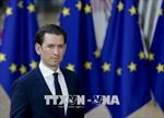 Áo lên kế hoạch thành lập các trung tâm tiếp nhận người di cư ngoài EU