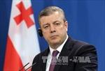 Thủ tướng Gruzia Giorgi Kvirikashvili bất ngờ từ chức