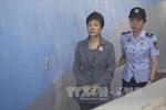 Nhận hối lộ, cựu Tổng thống Park Geun-hye bị yêu cầu mức án 12 năm tù