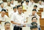 Thúc đẩy phát triển ngành chăn nuôi qua dự án Luật Chăn nuôi