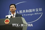 Trung Quốc bác bỏ cáo buộc của Tổng thống Mỹ về thao túng tiền tệ