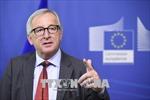 Nỗ lực của Mỹ nhằm chia rẽ châu Âu là 'vô ích'