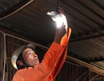 Sử dụng năng lượng hiệu quả chuyển từ tự nguyện sang bắt buộc