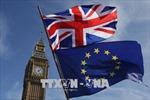 Biểu tình yêu cầu tổ chức trưng cầu về thỏa thuận cuối của Brexit