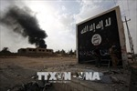 Iraq tiêu diệt hàng chục tay súng thánh chiến