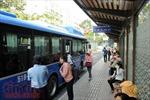 Mô hình xe minibus có giải quyết được ùn tắc giao thông?