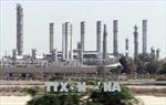 Căng thẳng thương mại Mỹ - Trung phủ bóng đen lên triển vọng về nhu cầu dầu toàn cầu