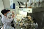 Doanh nghiệp 'vượt rào' kỹ thuật, xuất khẩu nông sản sang Hàn Quốc