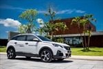 Thị trường ô tô nửa đầu năm 2018: Peugeot vượt lên trong phân khúc SUV/CUV châu Âu