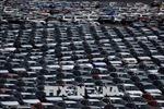 Nhật Bản khẳng định việc nhập khẩu ô tô không đe dọa nền an ninh quốc gia Mỹ