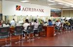 Agribank đồng hành phát triển cùng đất nước