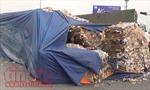 Hàng tấn giấy phế liệu tràn ra đường khi rơ-moóc bị lật