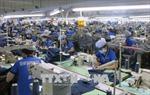 Thu thuế xuất nhập khẩu đang chịu nhiều áp lực