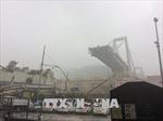 Thương vong trong vụ sập cầu ở Italy tiếp tục tăng
