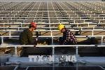 Trung Quốc 'tự bảo vệ' bằng cách sử dụng cơ chế giải quyết tranh chấp WTO
