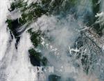 Hơn 560 đám cháy rừng lan rộng, Canada ban bố tình trạng khẩn cấp