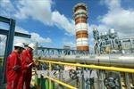 Cổ phần hóa 3 đơn vị của PVN thu về 7.450 tỷ đồng cho Nhà nước