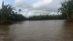 Bão số 4 gây sạt lở bãi đê hữu sông Văn Úc, Hải Dương