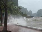 Ứng phó với bão số 4: Huyện đảo Bạch Long Vĩ đã có gió cấp 7