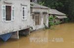 Hàng nghìn hộ dân Phú Thọ sống ngoài đê không có trong Quy hoạch phòng chống lũ